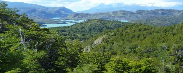 CHILI : Randonnées au parc Torres del Paine