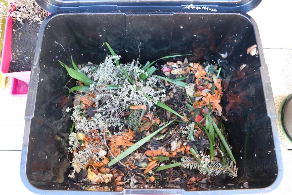 compostage jour 10