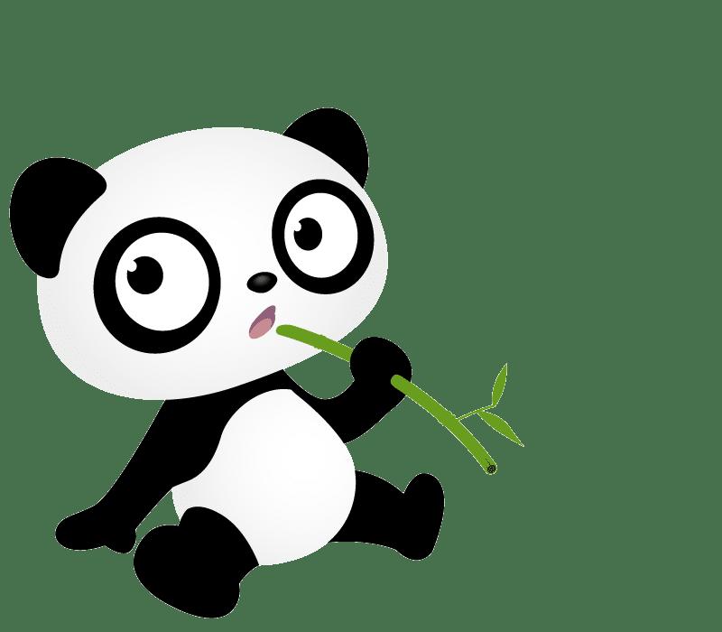 voyager avec un bebe panda