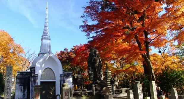 Mont TAKAO : 3 raisons de randonner sur une montagne sacrée du Japon