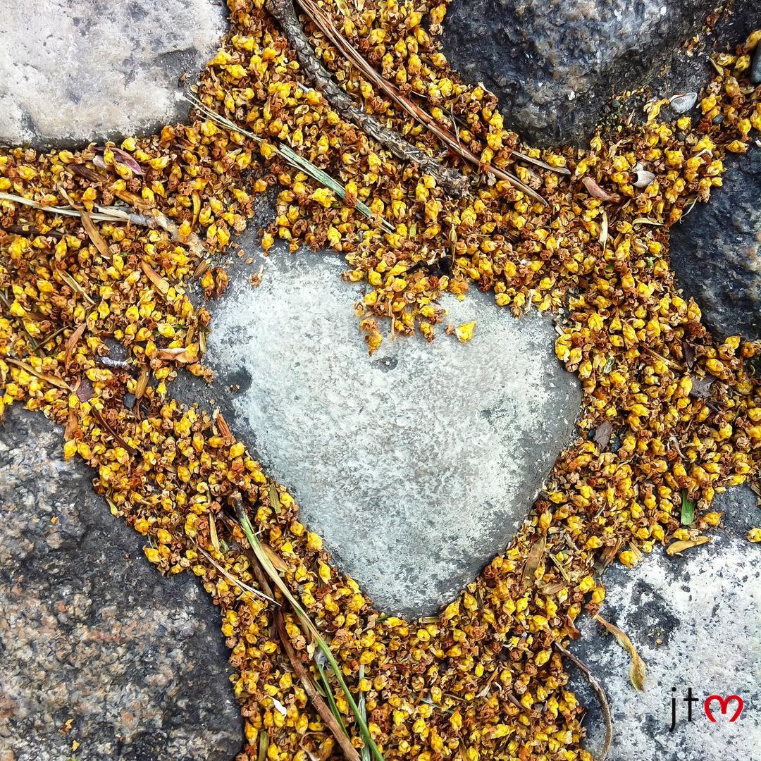 chasseurs de coeurs amour