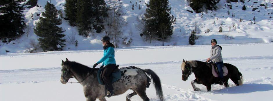 Cœur Équestre des 3 Vallées (Savoie) : au galop dans la poudreuse !