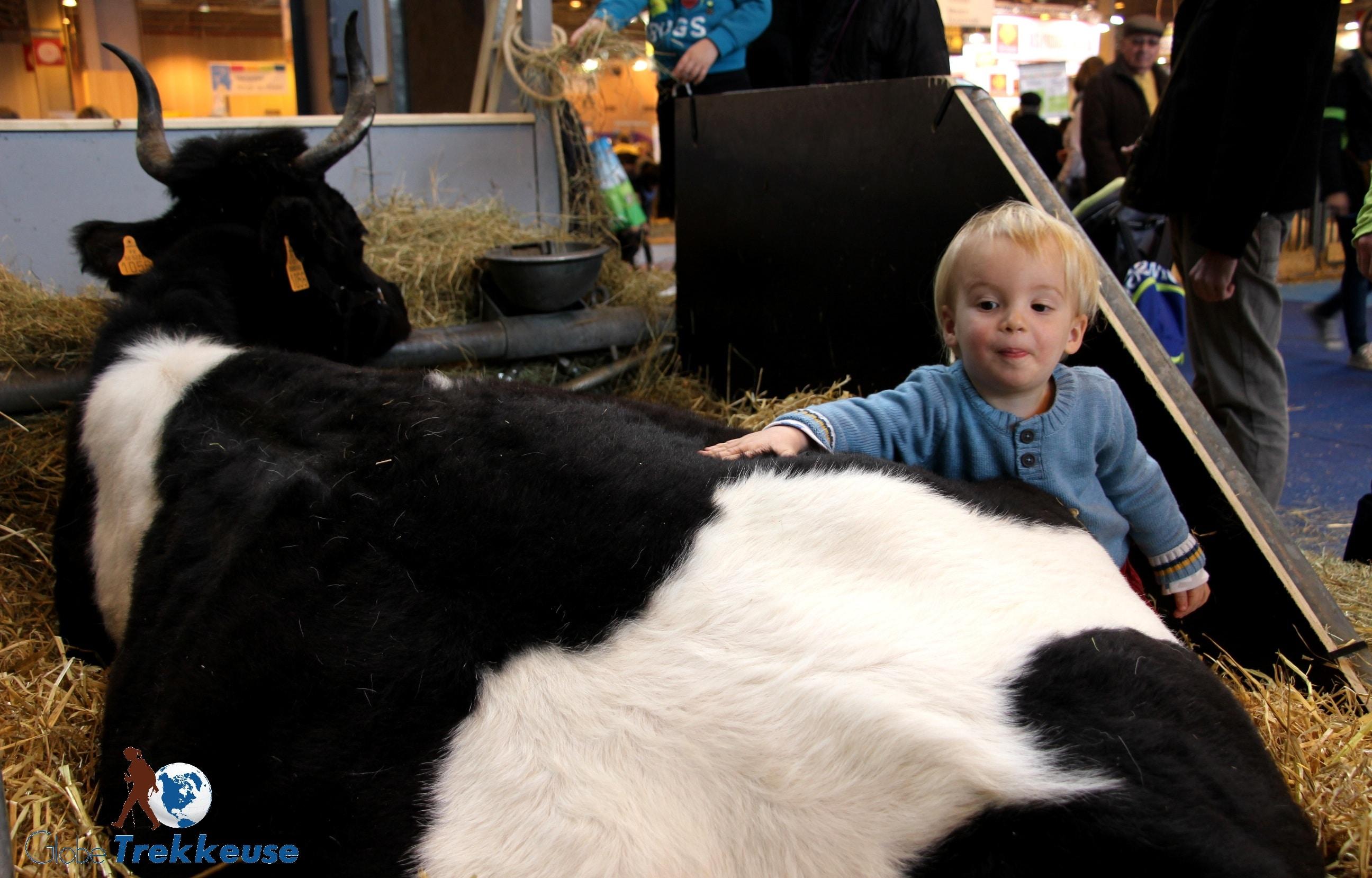 paris en famille salon agriculture vache