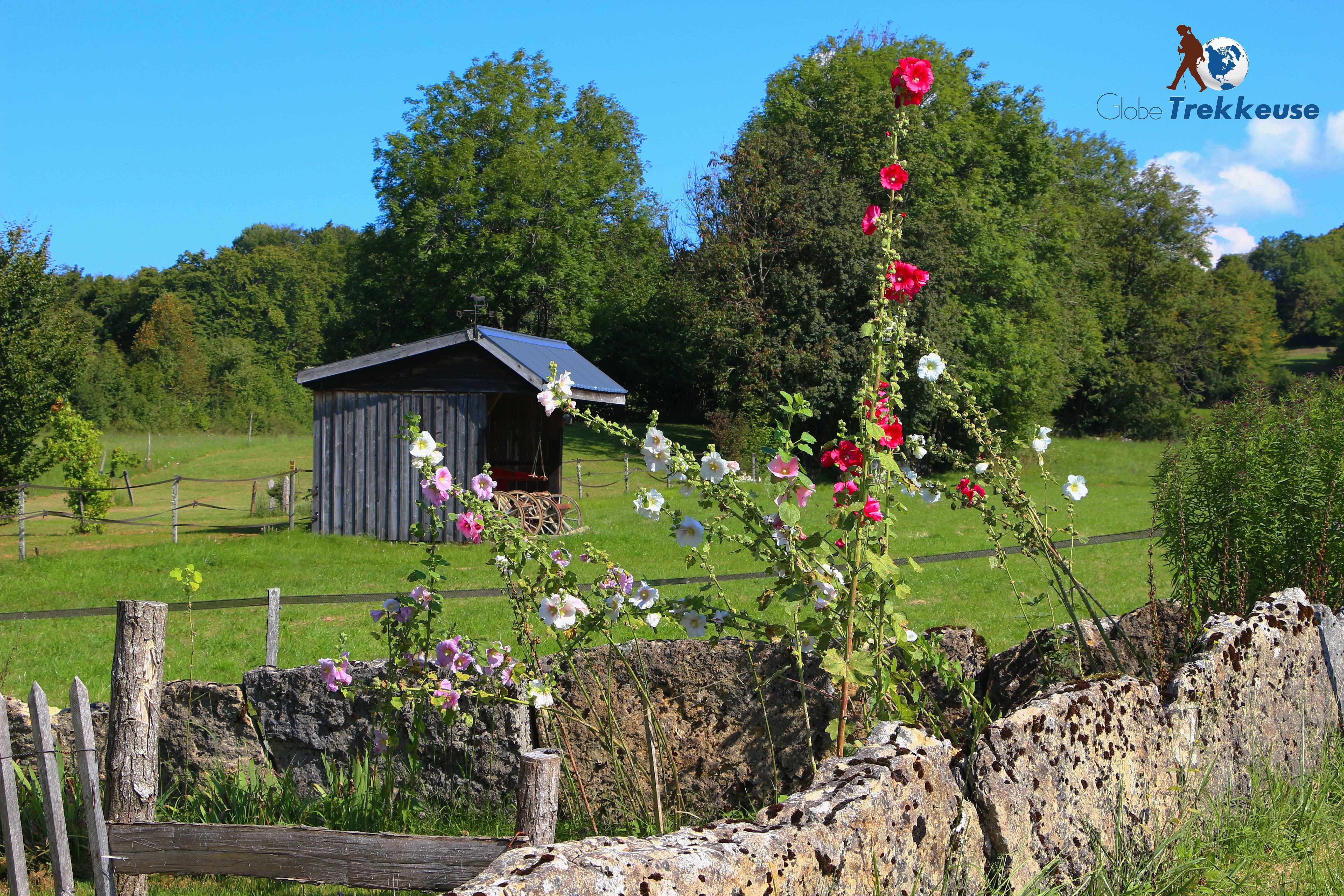 randonnée autour de lyon bugey fleur