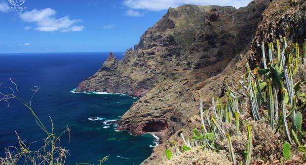 Randonnée à Tenerife : patchwork naturel sur la plus grande île des Canaries