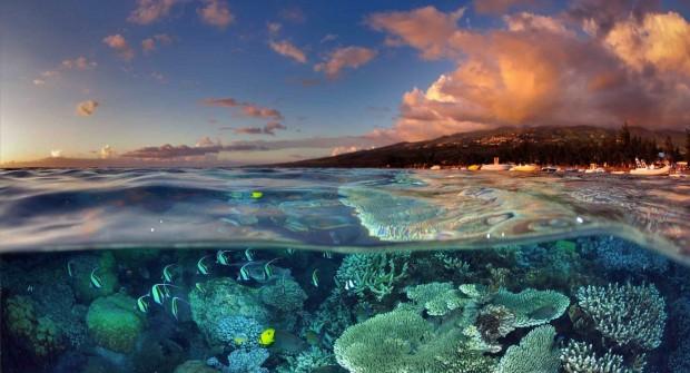 Gagnez un séjour à La Réunion pour fêter les 20 ans de Bourse des Vols !