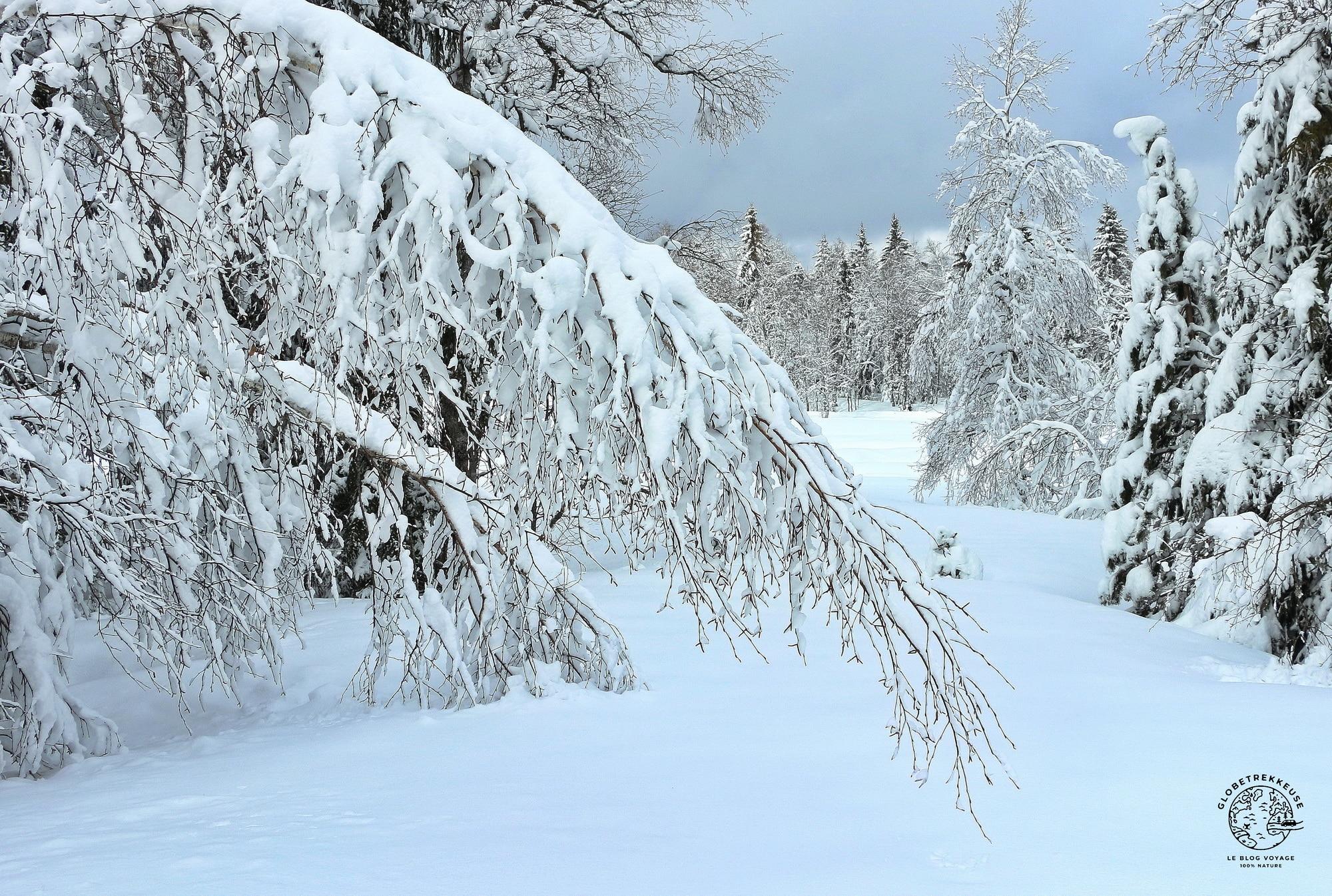 jura en famille hiver bellefontaine