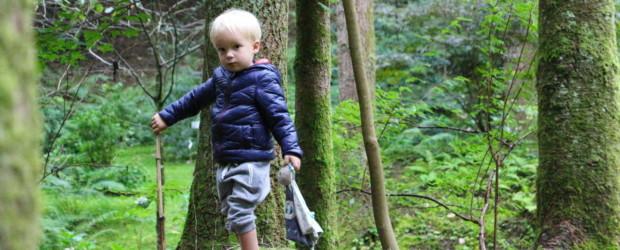 Luxeuil-les-Bains : activités nature avec enfants aux portes des Vosges