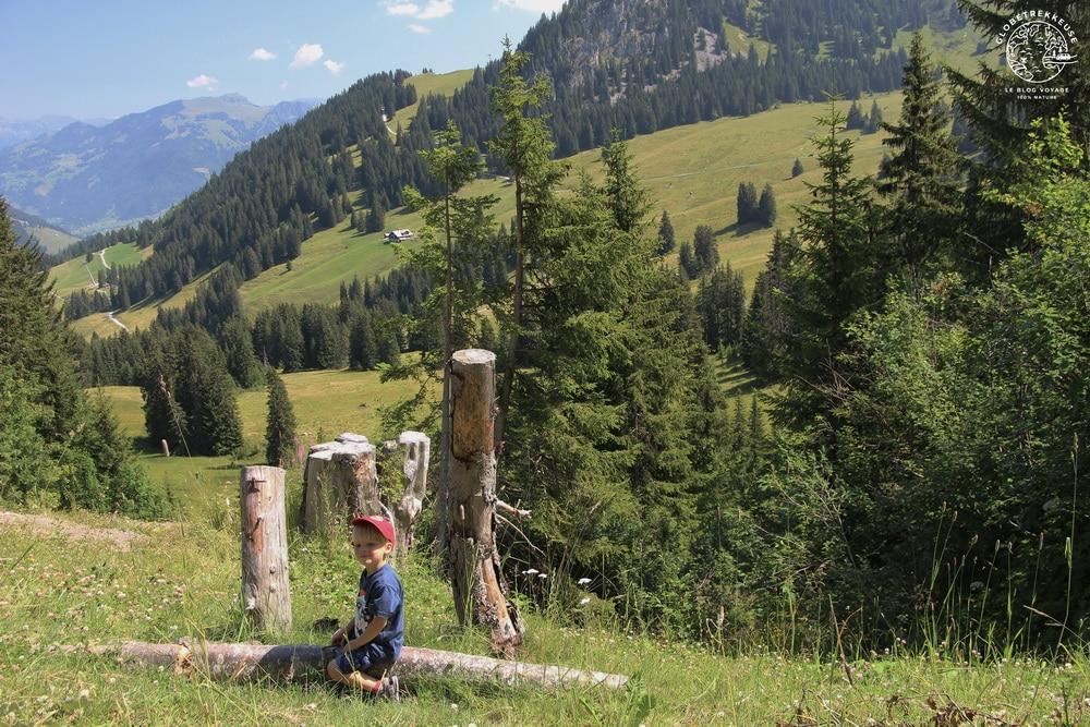 que faire gstaad suisse ete famille