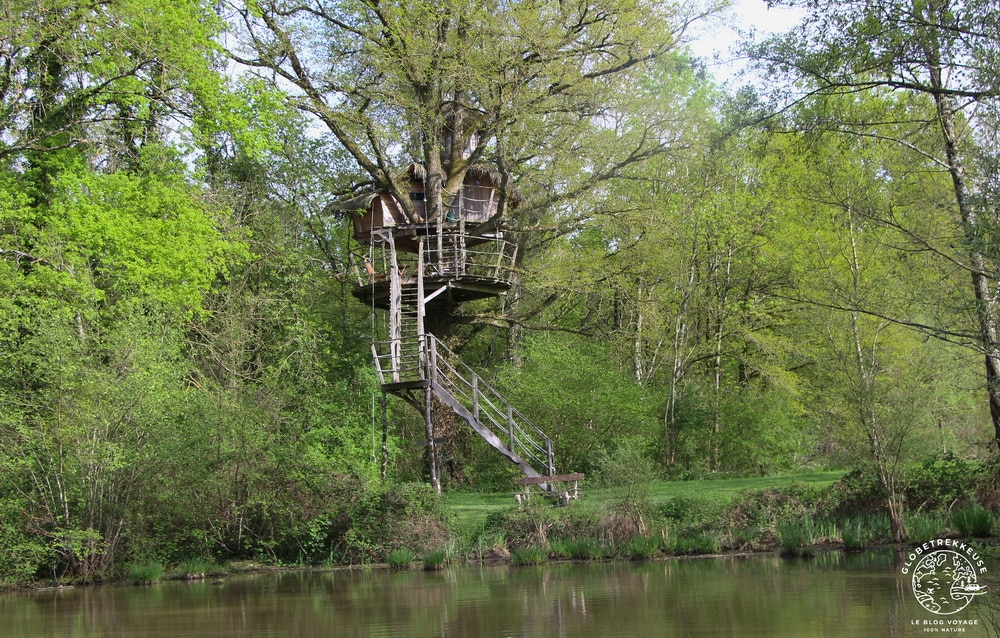 sejour insolite france dombes cabane arbre