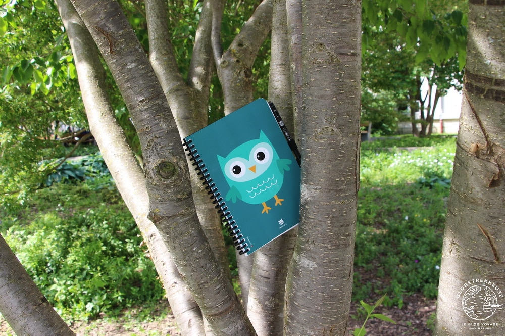 carnet de notes whynote arbre