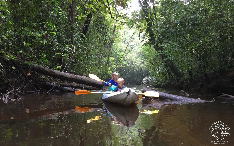 ecotourisme en guyane canoes