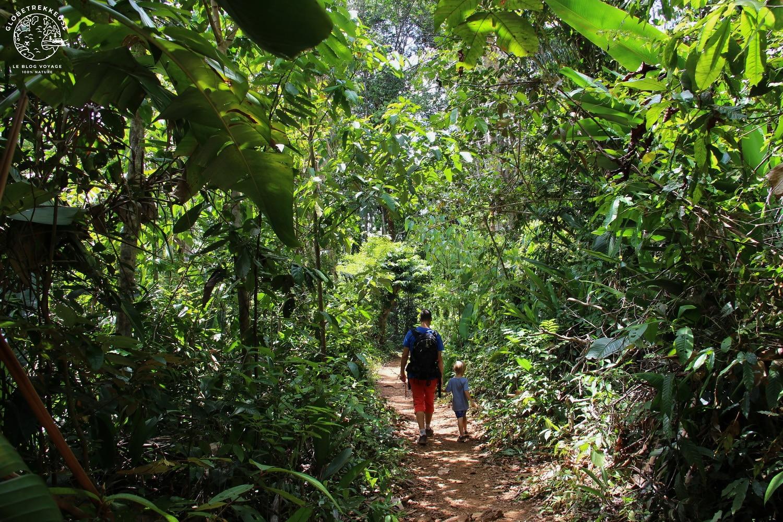 ecotourisme en guyane randonnee