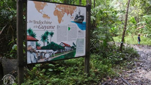 Bagne des Annamites, sur les traces des prisonniers de Guyane (randonnée)