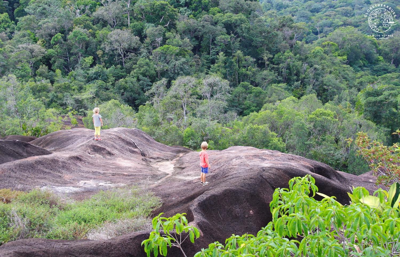 randonnee en guyane savane-roche virginie