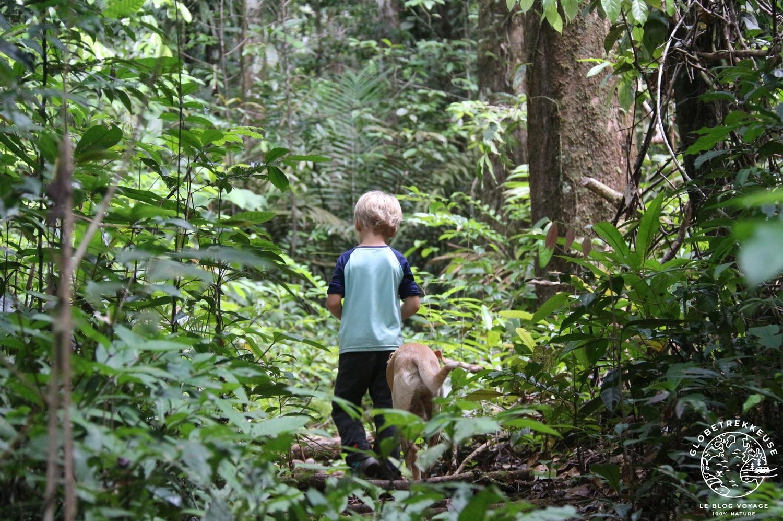 sentier du molokoi guyane enfant