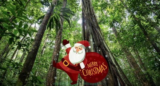 5 cadeaux utiles et insolites pour voyageurs accrocs à la nature !