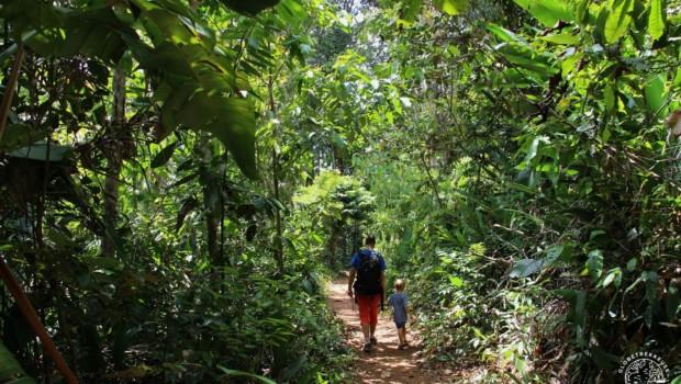 La Guyane en famille, 10 sites à découvrir proche de Cayenne