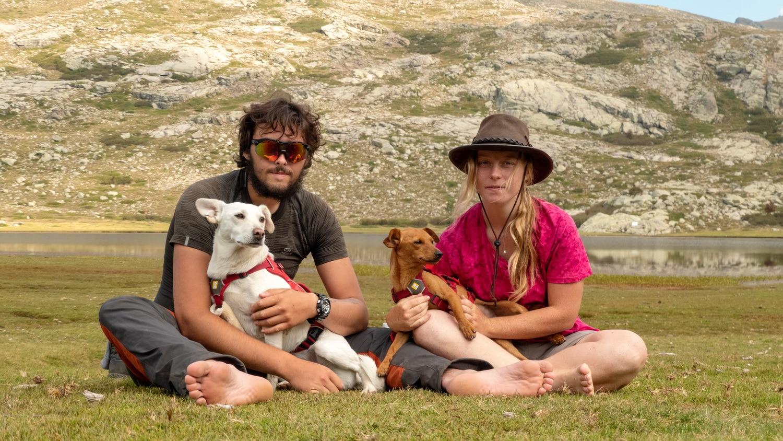 tour du monde avec chiens patwild