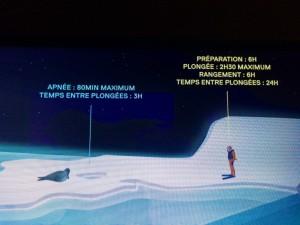 antartica-comparaison