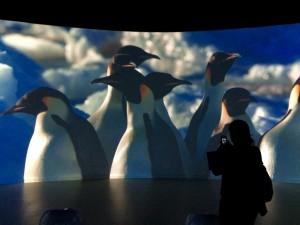 antartica-exposition