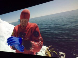 antartica-plongeur