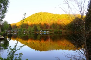 camping-muhlenbach-etang