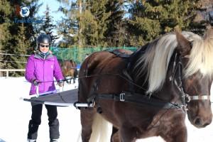 coeur-equestre-meribel-skijoering-initiation