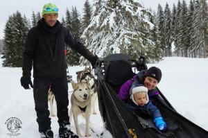 jura-en-famille-hiver-chiens-traineaux-3