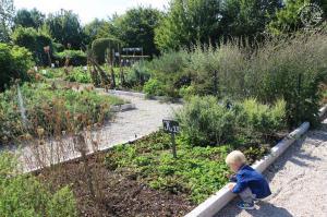 lac-du-der-musee-jardin
